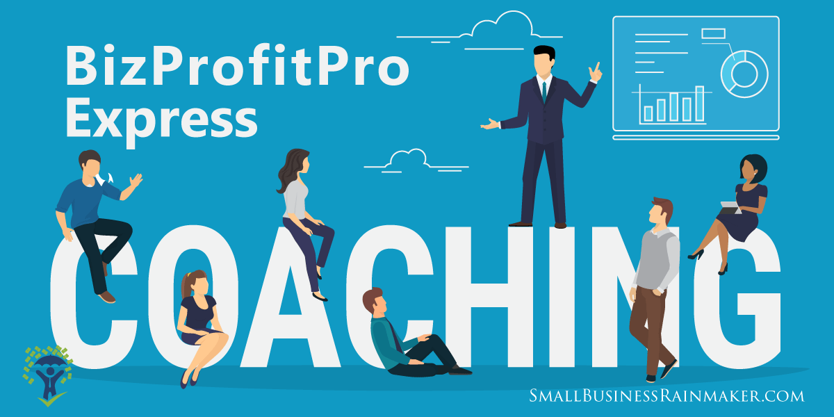 bizprofitpro express coaching services