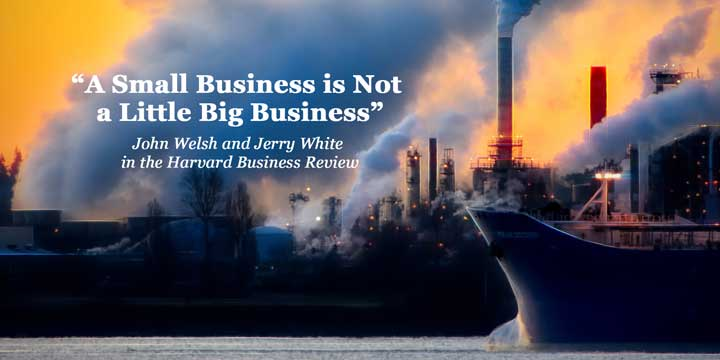 small business is not a little big business