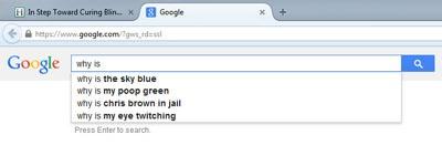 google-search-screenshot-poop400.jpg