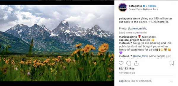 patagonia social issues protect public lands