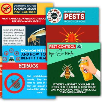 pest control local social link