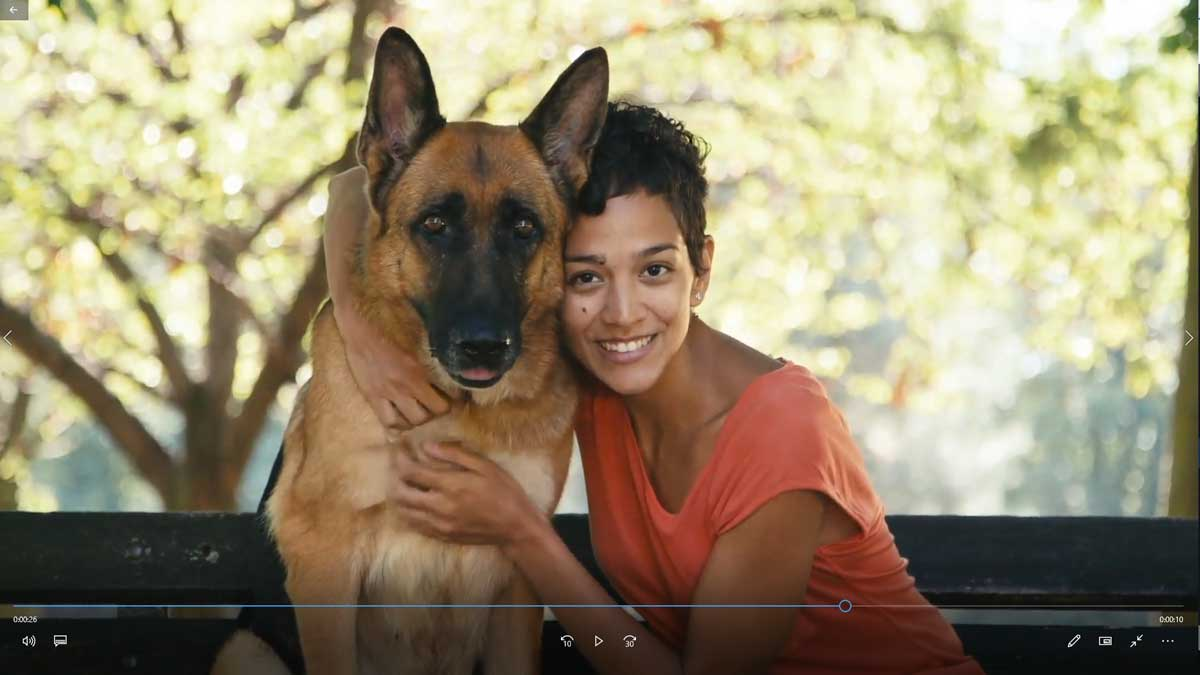 animal-trainer-video-marketing-template